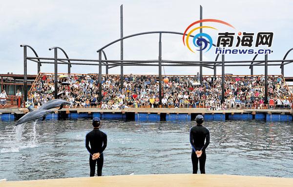 海南分界洲岛上的惊喜:游客微信炫耀小岛假期