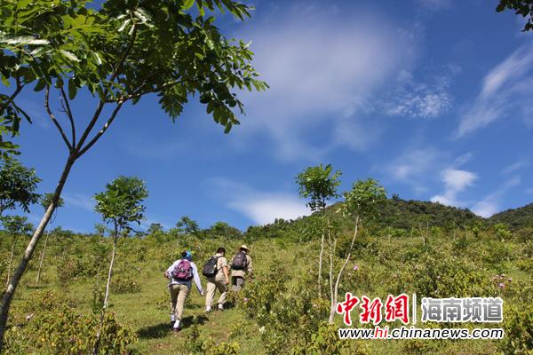 海南鹦哥岭省级自然保护区成立于2004年7月,位于海南岛中南部,面