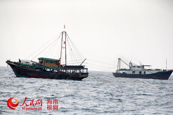 近海渔船图片_儋州近海拖网捕鱼泛滥 禁渔区遭灭绝性捕捞(组图)