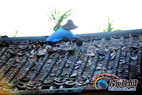 平房受损少瓦房是风俗 海南农村重建该盖什么