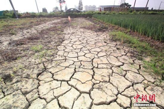 全国多地遇63年最严重干旱 生活用水频频告急图片 56265 550x366