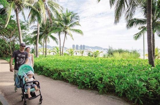 游客在三亚湾畔椰梦长廊漫步。 记者 武威 摄