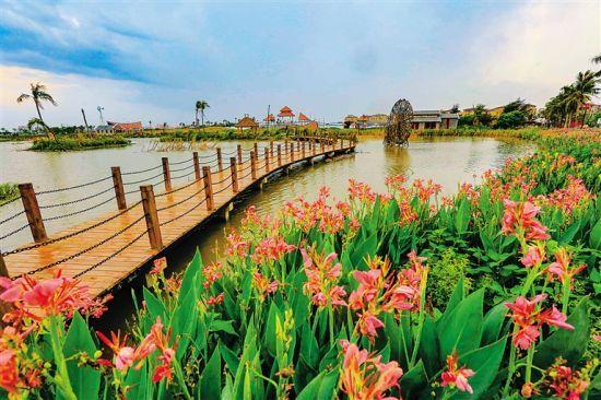 海口桂林洋的美丽乡村。本报记者 陈元才 摄