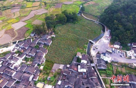 资料图:俯瞰航拍江西婺源田园上的进士村——严田古村,这里从宋自清出了共二十七名进士。刘占昆 摄