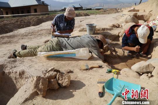 中乌学者配合工作。 西北大学中亚考古队供图