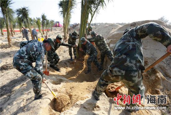 中国第40个植树节 陵水为城市添种5000多株绿树