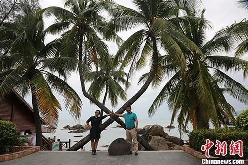 资料图:游客在海南三亚天涯海角游览区内的情侣树前合影。 中新社记者 尹海明 摄
