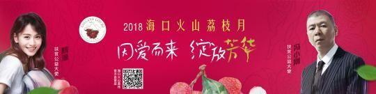 冯小刚、隋源共同为海口农业品牌发声。