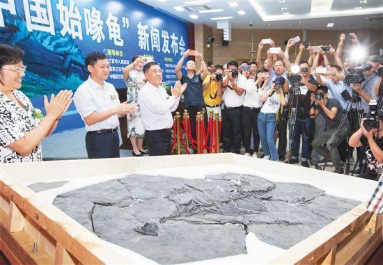 中國始喙龜化石。武威 攝
