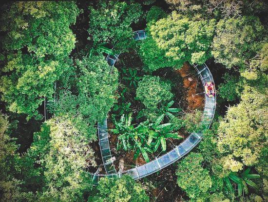 海南首个雨林高空漂流项目开漂