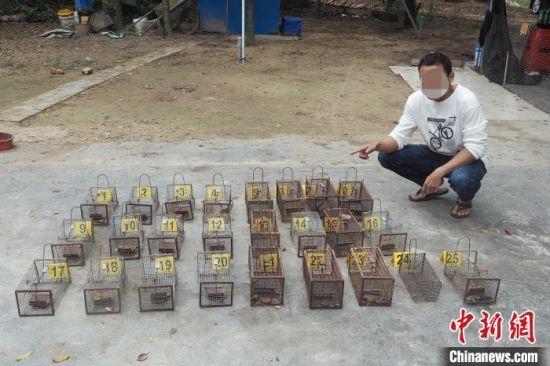 海南警方侦破一批涉野生动物案件