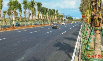 海口龙昆南延长线绿化工程力争3月底完工