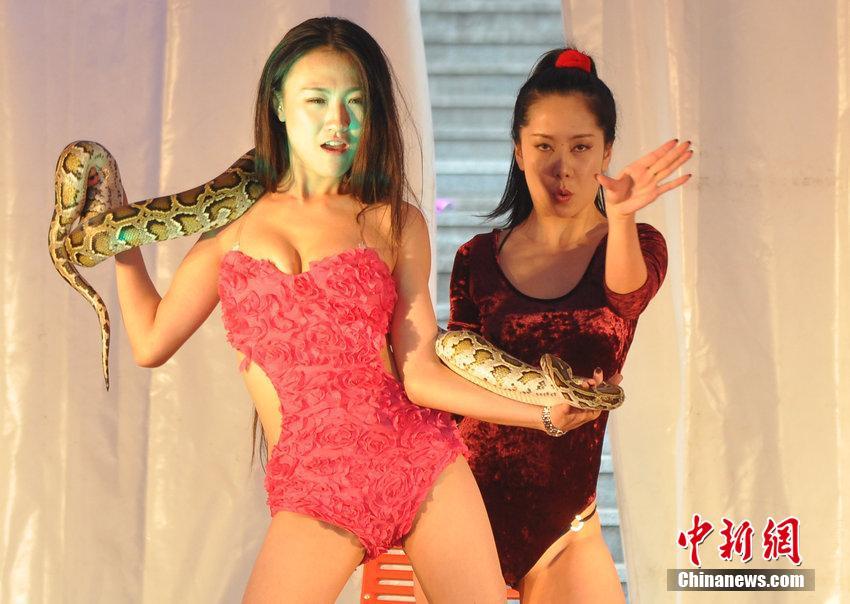 沈阳房交会上演性感蛇舞 大尺度引观众尖叫4