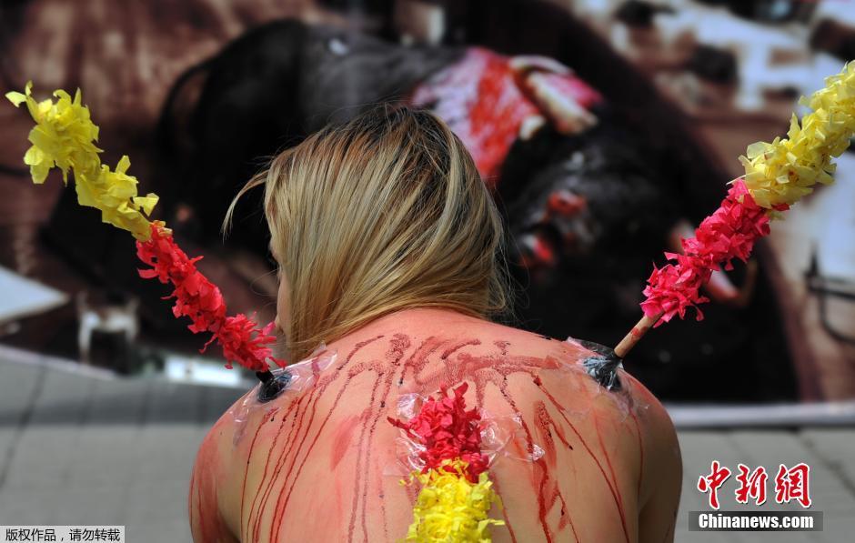 哥伦比亚美女裸体示威抗议斗牛活动(3)