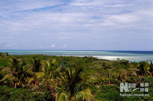 资料图片:西沙金银岛上的植被(1991年摄)新华社记者 姜恩宇 摄