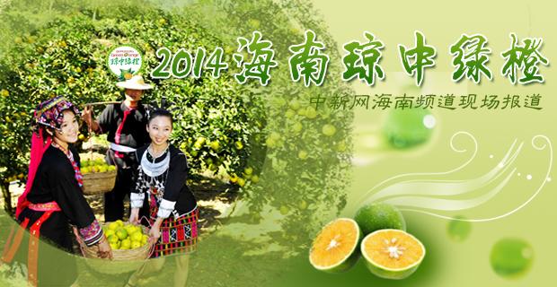 2014海南琼中绿橙开摘季